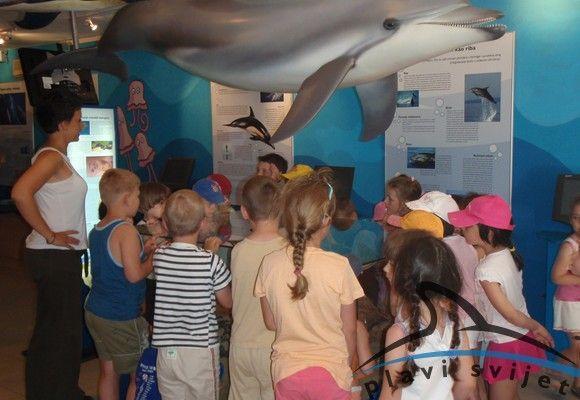 Előadás az oktatóközpontban (Kép:www.blue-world.org)